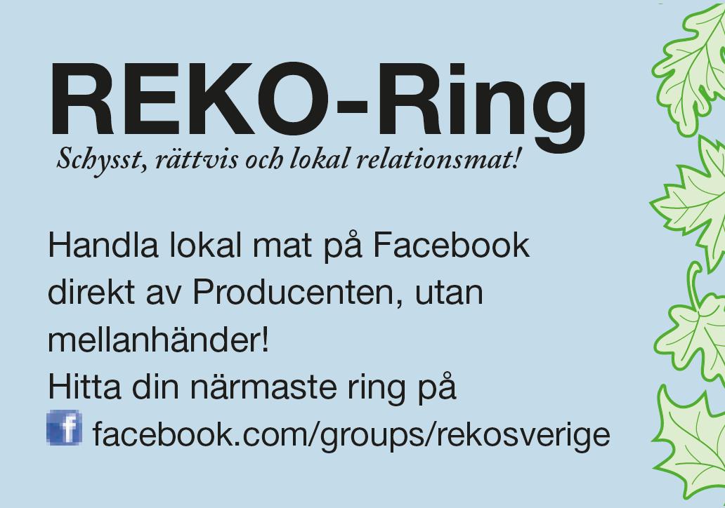 Matfest Annons 2018 REKO-Ring